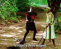 Name:  flesh-wound.jpg Views: 217 Size:  19.1 KB