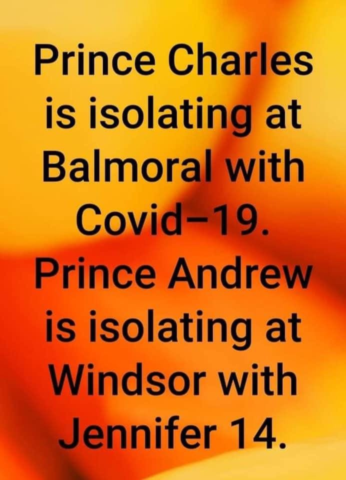 Name:  Prince.jpg Views: 287 Size:  62.5 KB