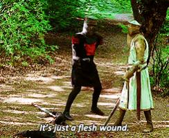 Name:  flesh-wound.jpg Views: 245 Size:  19.1 KB